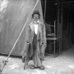 [Un Clown : l'Auguste]