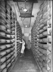 """[Société des entrepôts frigorifiques lyonnais : cave d'affinage de la société """"Le Gruyère français""""]"""