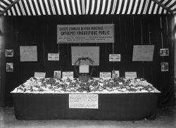 [Société des entrepôts frigorifiques lyonnais : présentation de produits conservés dans le froid, en 1907]