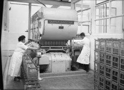 [Laiterie du Sud-Est : machine Super-Castor utilisée pour la mise en bouteille automatique]