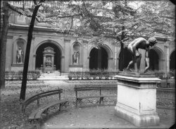 [Jardin intérieur du Palais Saint-Pierre]