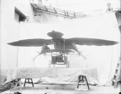 [Maquette d'un aéroplane et propulseur Pompeïen]