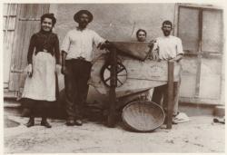 [Les Travaux de la ferme à Taluyers (Rhône), au début du XXe siècle]