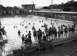 [La Piscine d'été de Cusset à Villeurbanne : un groupe de baigneurs]