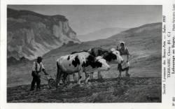 Terraire Clovis (H. C.): Labourage en Bugey