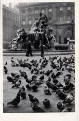 Vues de Lyon : Lyon ; Les Pigeons de la Place des Terreaux et la fontaine Bartholdi.