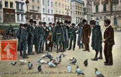 Lyon : Les pigeons de la place des Terreaux.