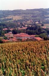 [Commune de Simandres (Rhône)]