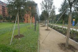Le jardin de la Cité Internationale