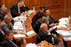 [Conseil général du Rhône : séance du 18 mars 2005]