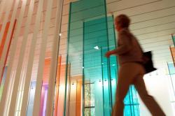 [8e Biennale d'art contemporain de Lyon (2005). La salle Daniel Buren au Musée d'art contemporain]