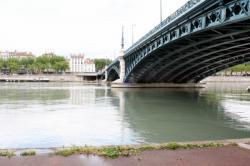 [Le pont de l'Université sur le Rhône]