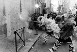 Fête du nouvel an chinois, rue Pasteur