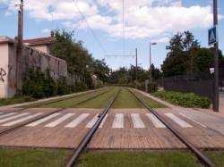 Les rails du Tramway, square Georges Bazin
