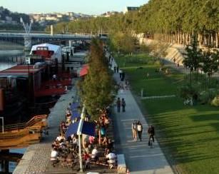 Les berges du Rhône, en aval du Pont Lafayette