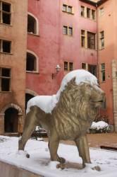 Quartier du Vieux Lyon. Sculpture de Lion réalisée à l'occasion de la Biennale des Lions.