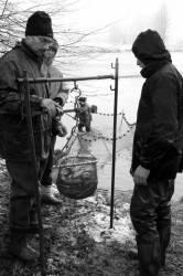 Pêche dans la Dombes 17/36 : Pesée d'un filochon rempli de poissons.
