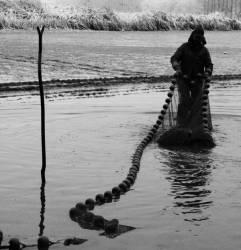 Pêche dans la Dombes 34/36 : Le filet est rincé...