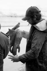 Pêche dans la Dombes 36/36 : Les pêcheurs mettent leurs vêtements à sécher.