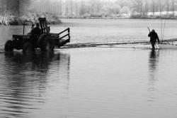 Pêche dans la Dombes 04/36 : Les pêcheurs tirent le filet à tour de rôle...