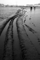 Pêche dans la Dombes 16/36 : Traces de pêche au tracteur...