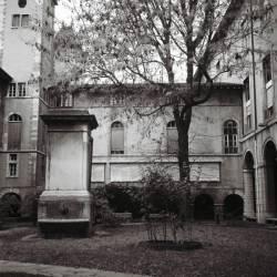 Le Jardin intérieur de l'hôtel-Dieu