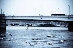 Le pont de la Guillotière. 4/5