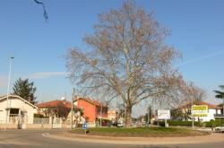 Rond point reliant l'avenue François-Mitterrand et l'avenue Salvador-Allende