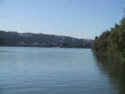 Le Rhône vu du parc de Gerland