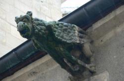 Gargouille de la collégiale Notre-Dame-des-Marais
