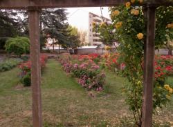 Le square de la Roseraie à Villeurbanne