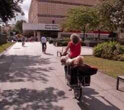 Une femme transportant ses chiens dans ses porte-bagage, allée de la bibliothèque