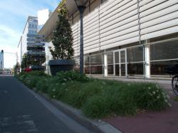 Boulevard Vivier-Merle : plantations