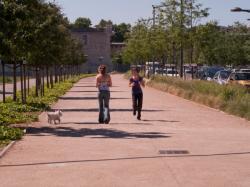 La plateforme le long de la rue Mouton-Duvernet sur laquelle sera construite la T4 vue depuis l'avenue Félix-Faure