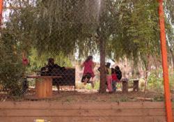 Le jardin nomade Brin d'Guill' : un jardin de quartier partagé vu depuis la rue Montesquieu