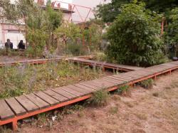 Le jardin nomade Brin d'Guill' : un jardin de quartier partagé et l'îlot d'Amaranthes