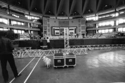 """[Palais des Sports de Gerland. Préparatifs pour la comédie musicale """"Napoléon"""", avec Serge Lama]"""