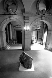 La Palais Saint-Pierre, musée d'art contemporain