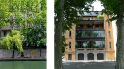 Face à face au fil de la Saône 04/9 : Sous les arbres