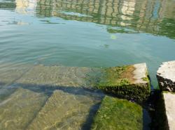 Voies d'accès à la Saône 05/10 : Reflet du Grenier d'Abondance sur la Saône
