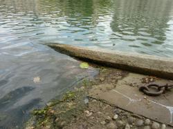 Voies d'accès à la Saône 06/10 : Descente en pente douce