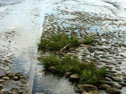 Voies d'accès à la Saône 07/10 : Rails disparaissant dans la Saône