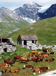 Paysage de Tarentaise, Savoie