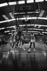[Basket : ASVEL - Université d'Arizona (96-103)]