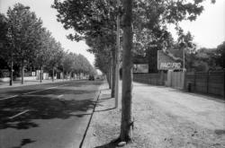 [Le boulevard Pinel]