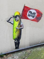 Tag Monsanto, rue du Général Anthelme de Sève