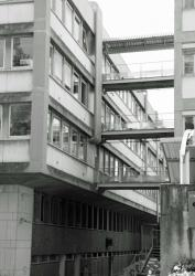 Campus de la Doua - Chaos