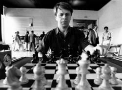 [Ulf Andersson, Grand Maître international d'échecs]