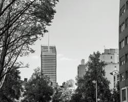Tour Incity, vue de la rue Garibaldi