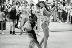 La danse du chien, fête de la musique 2013